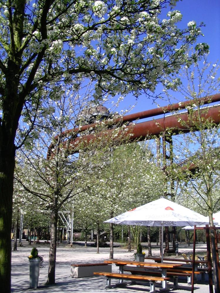 Landschaftspark Duisburg- Nord